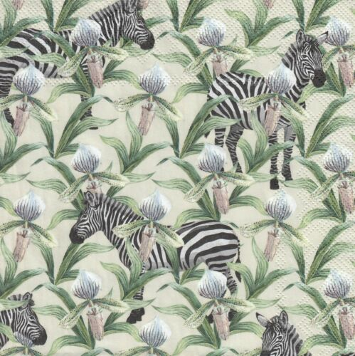 QQ4 Zebras 3 Lunch Papier Servietten Napkins