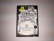 Internal Hard Drive Western Digital WD800BEVS-08RST2 80GB