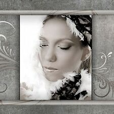 ULTIMATE 1000+ Digital Backgrounds Muslin Backdrops Scrap Booking Templates PRO!