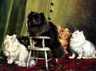 POMERANIAN CHARMING DOG GREETINGS NOTE CARD BEAUTIFUL BLACK POM IN CHAIR & CATS