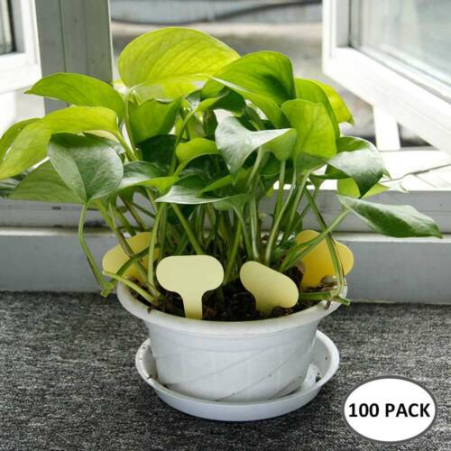 100X Plant Labels Markers Tags For Garden Nursery Tags Flowers Florist Reusable