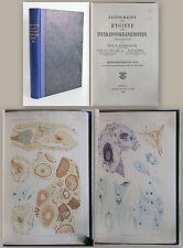 Koch Zeitschrift für Hygiene und Infektionskrankheiten 1907 Bd. 56 Medizinn xz
