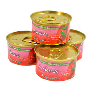 Jen-Scents-Air-Freshener-Can-Organic-Car-Air-Freshener-In-a-Can-4PK-Strawberry