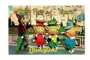 USA-California-Disneyland-Three-Pigs-amp-a-Friend-Vintage-Postcard