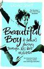 Beautiful Boy von David Sheff (2009, Taschenbuch)