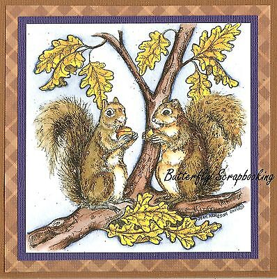 AUTUMN SQUIRREL PAIR FALL LEAF Wood Mounted Rubber Stamp NORTHWOODS PP10097 New