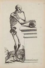 Vintage Anatomy Medical Human Skeleton Painting Chart Real Canvas Art Print New