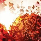 All is Forgiven by Bvdub (CD, Nov-2012, n5MD)
