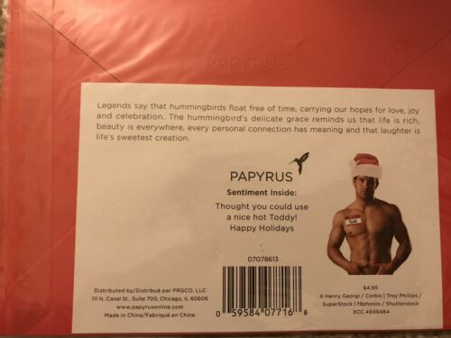 """NIP Papyrus Merry Christmas Card """"Sexy Funny"""" Snow Cabin Happy Holidays"""