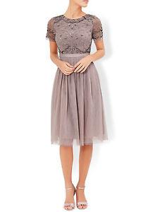 Lf077 Rrp Mink Dress Tulip 149 01 Uk Monsoon Taille 10 Embeliished Bb xRAwwqz