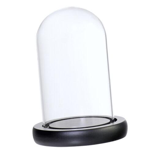 Glashaube DIY Deko Glaskuppel Glassturz Glasglocke mit Holz Basen Schwarz