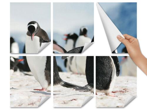 Fliesenaufkleber Fliesen Bad Küche Fliesensticker Tiere Pinguine Schnee Eis