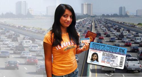 NEW ITAC International Drivers License 2yrs