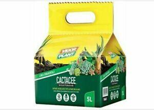 Terriccio specifico per piante Grasse Cactacee Cactus Succulente Lt 5 Vigorplant