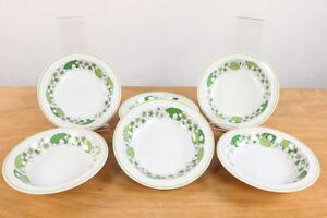 6-Suppen-Teller-Kiruna-Thomas-Porzellan-19-2-cm-Dekor-Fruehling-Obstblueten