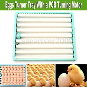 220V Chicken Eggs 360° Turner Automatic Quail Bird Poultry Egg Incubator Tray