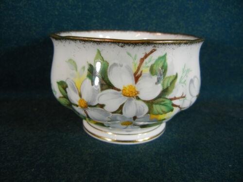 "Royal Albert White Dogwood Brushed Gold 3 1//8/"" Open Sugar Bowl"