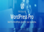 Cloud-WordPress-Pro-Hosting-SSD-cPanel-with-Softaculous-Free-Comodo-SSL thumbnail 1