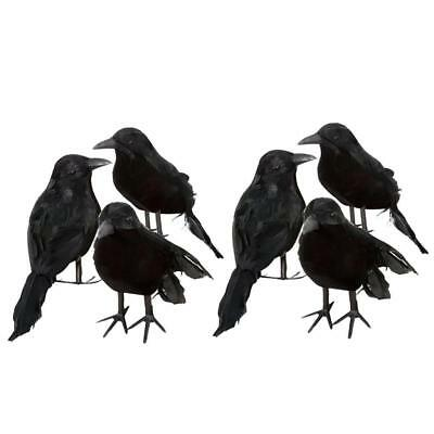 Raven Bird Dress Child Costume Small