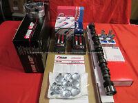 Dodge 318 Master Engine Kit Torque Cam 1969-73 Pistons Push Rods Valve Springs+