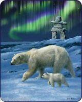 Northern Lights Polar Bears Bear Queen 79 X 96 Soft Medium Weight Bed Blanket
