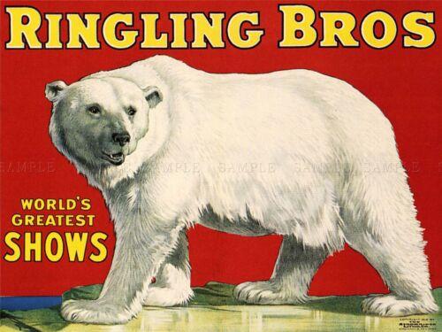 ADVERTISING CIRCUS RINGLING BROS POLAR BEAR GREATEST SHOW USA POSTER PRINT LV618