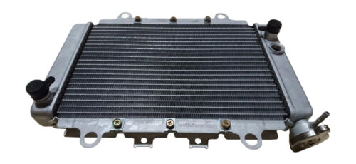 5NDE240A0000 5NDE240A0100 New Replacement ATV Radiator Yamaha OEM #