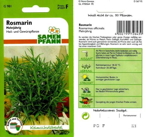 mehrjähriges Würzkraut mit intensiven Duft Kräuter Saatgut Samen Rosmarin