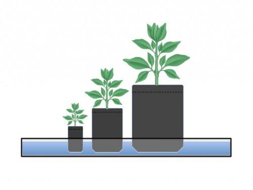 10 Root Pouch vert poignées Géotextile Smart potager grow déco container 127L