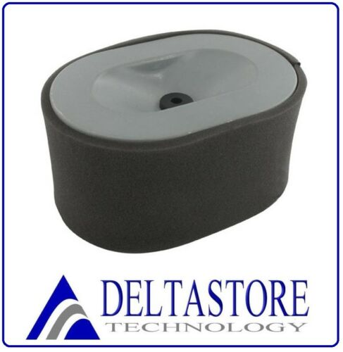 Air FILTER DRY TYPE Yanmar l100 and Compatible 186f