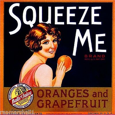 Lucerne Park Florida Squeeze Me Orange Citrus Fruit Crate Label Art Print