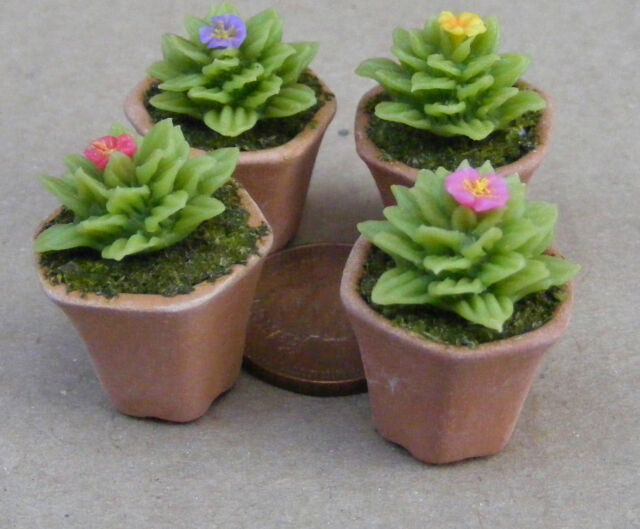 1:12 Single Clay Cactus & Pot Dolls House Miniature Flower Garden Accessory 4
