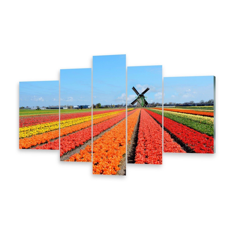 Mehrteilige Bilder Glasbilder Wandbild Windmühle Tulpen