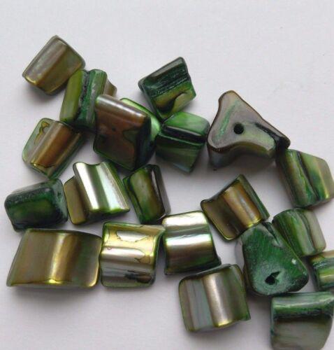 vert 40 Perles en coquillages embellissements//Artisanat//Fabrication de Bijoux 7 mm Long