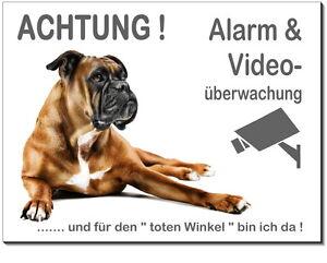 Dekoration Möbel & Wohnen Boxer-hund-alu-edelstahl-optik-20 X15 Oder 30x20 Cm-alarm-video-schild
