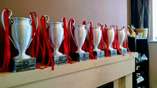 Liverpool football trophy collection #2