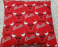 Vintage Chicago Bulls Logo Pillow
