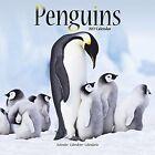 Penguins Calendar 2017 by Avonside Publishing Ltd.