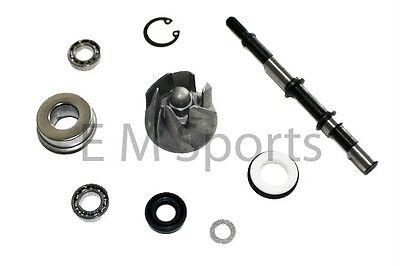 China Go Kart Buggy 250cc 300cc Water Pump Kit Parts COOLSTER GK-6250 GK-6250DB