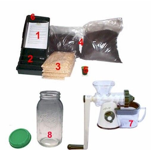 Wheatgrass Starter Kit Grow Fresh Wheatgrass Add Juicer Sprouting Jar or Juicer