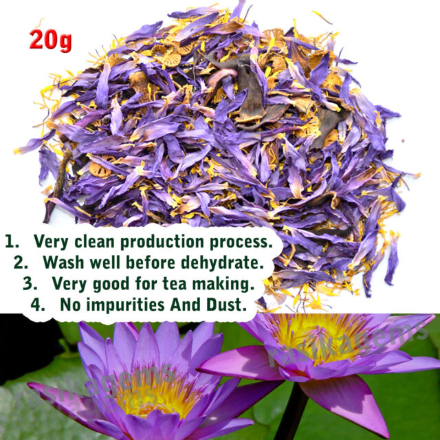 Dried blue lotus flowers nymphaea caerulea nuciferine herbal tea dried blue lotus flowers nymphaea caerulea nuciferine herbal tea smoke puff 20 mightylinksfo