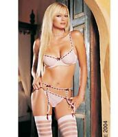Bra, Thong And Garter Belt Set - Small - Pink/burgundy - Leg Avenue 8022