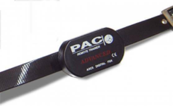 CS PAC AXC Digital Collar only for DXT or BXT series