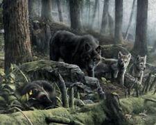 Woodland Sentry by Kevin Daniel DEER ART PRINT 11x9 Antlers Wildlife Poster