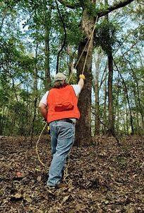 CS-48-High-Long-Reach-25ft-Tree-Limb-Branch-Rope-Chain-Saw-Pruner-OFFER-12