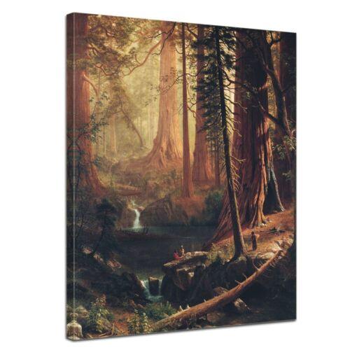 Kunstdruck Albert Bierstadt Alte Meister Giant Redwood Trees of California