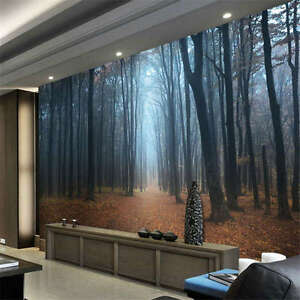 High Quality Image Is Loading Black Forest Germany Night Full Wall Mural Photo  Images