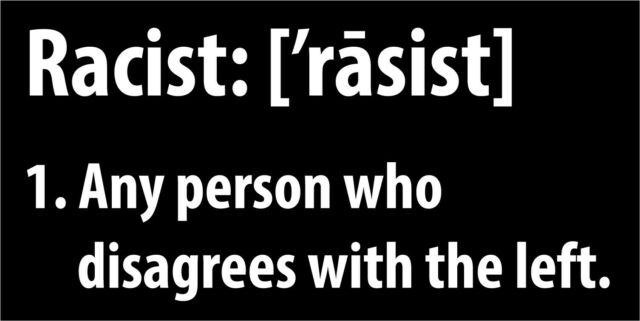 Decal USA Republican Freedom Political Anti Democrat Bumper Sticker