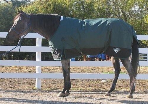 Winter Horse Turnout Blanket - Saxon Heavy - Hunter Grün - Größes 60