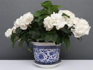 Blumentopf Blumenübertopf Pflanztopf Blau-Weiß Stil Porzellan  Ø 29cm P0141-4 Antiquitäten & Kunst